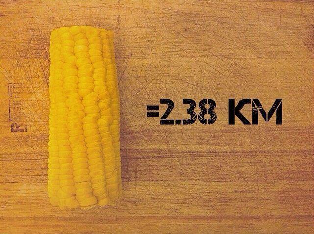eda-v-kilometrah-bega-corn