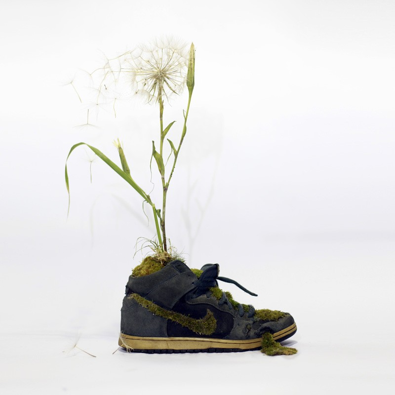 french-artist-combines-sneakers-and-nature14