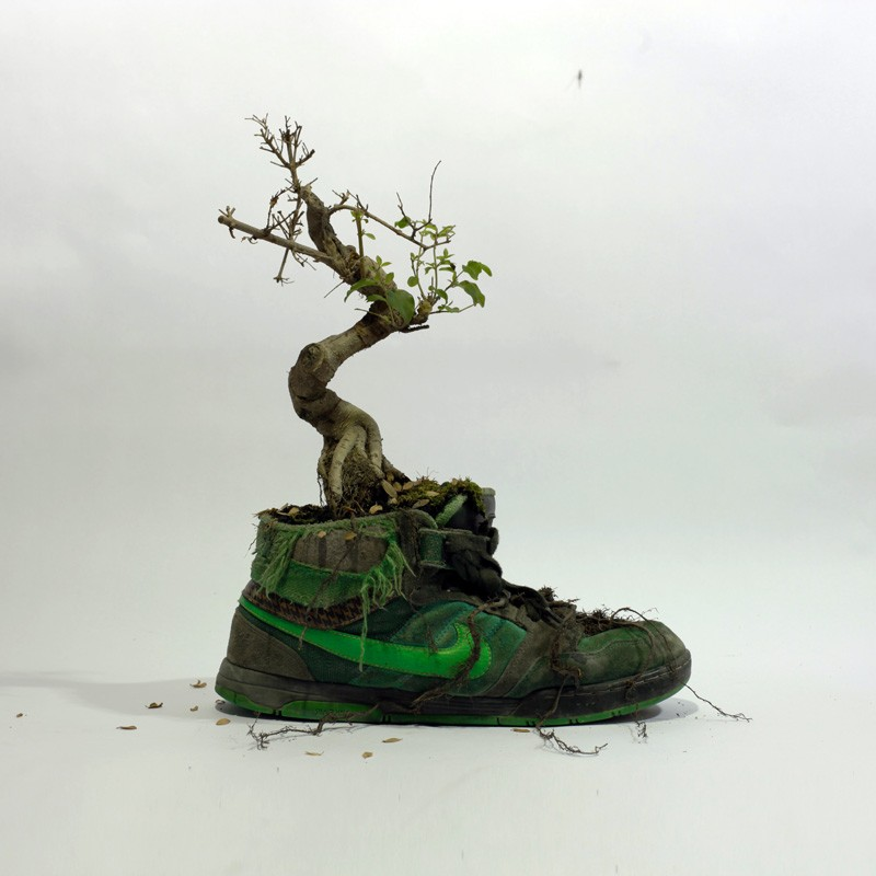 french-artist-combines-sneakers-and-nature6