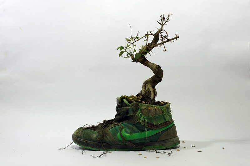 french-artist-combines-sneakers-and-nature7
