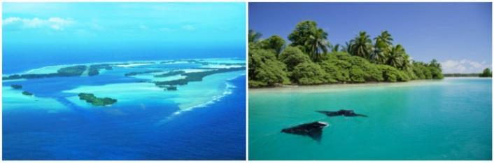 atoll-palmira1
