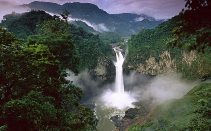 dojdevie-lesa-amazonii