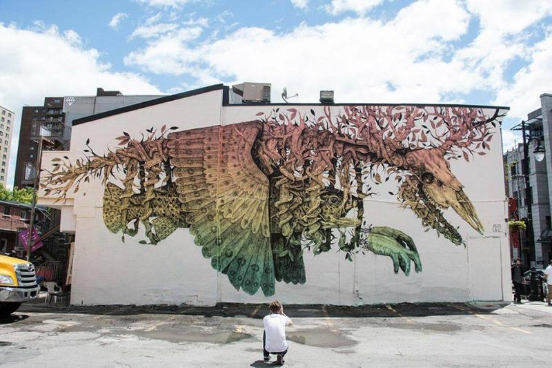 graffiti-gibridov-zhyvotnyh-i-prirody-5