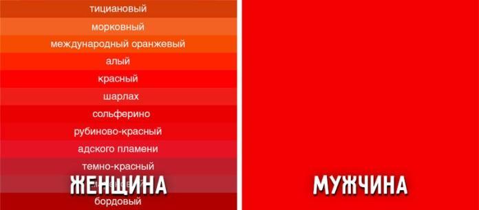 9-foto-kotorye-dokazyvayut-chto-1