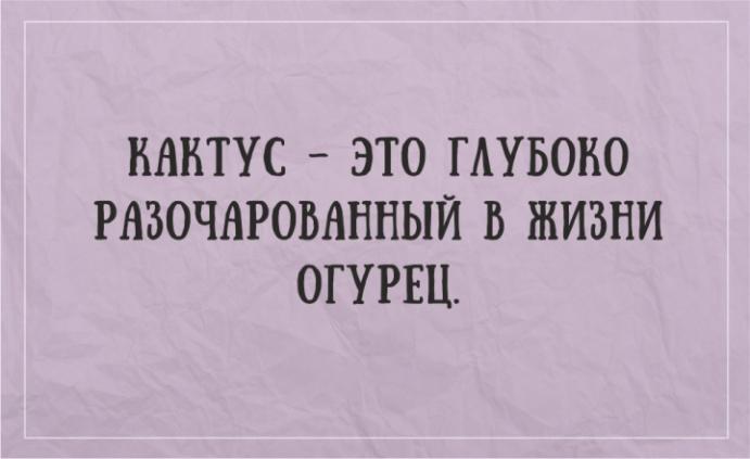 zhiznennye-otkrytki-10