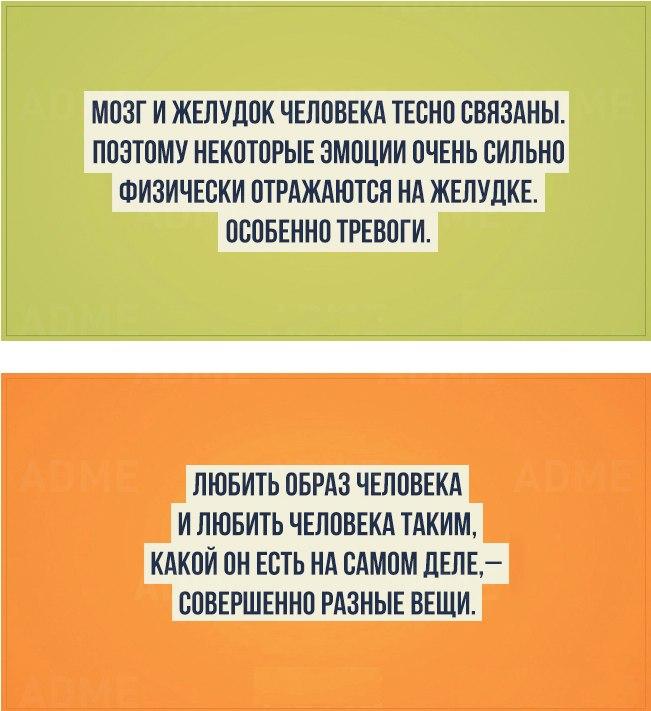 20-faktov-o-cheloveke-i-ego-prirode-8