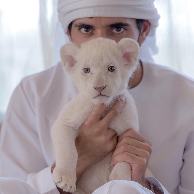 instagram-princa-dubaya-7