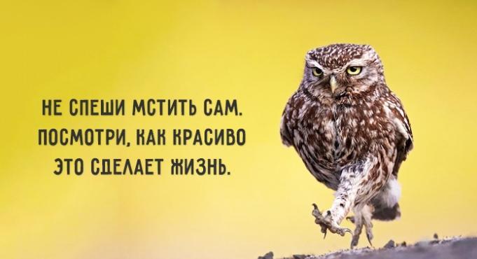 soveti-dnya-11