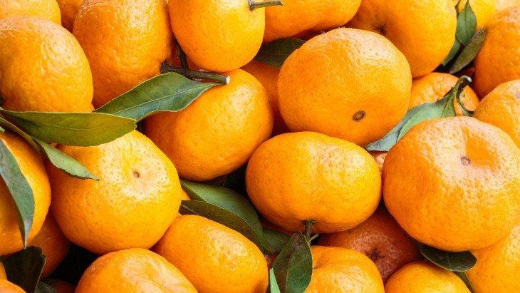 10-interesnyh-faktov-o-lubimchike-novogo-goda-mandarine