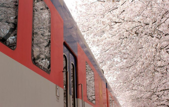Проезжающий поезд. Фотограф Janvika Shah