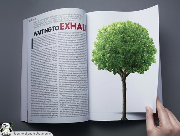 Социальная реклама против вырубки лесов.