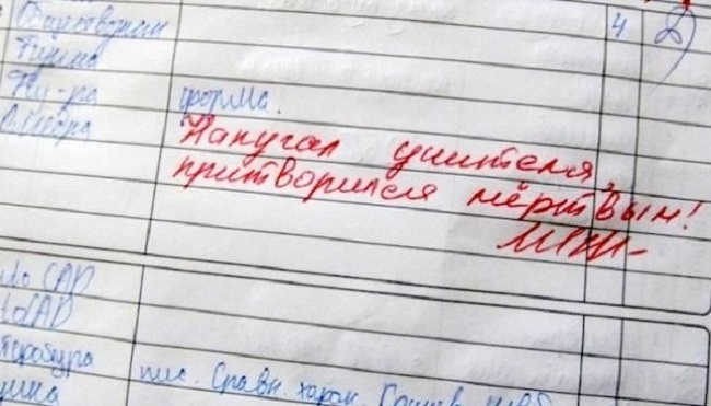 30-neozhydannyh-zapisey-v-shkolnyh-dnevnikah-1
