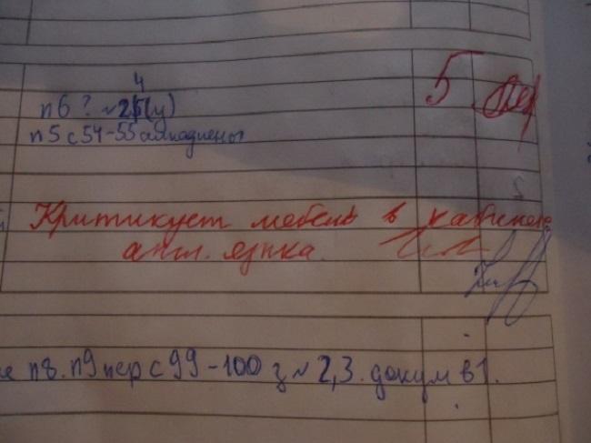30-neozhydannyh-zapisey-v-shkolnyh-dnevnikah-27