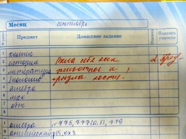 30-neozhydannyh-zapisey-v-shkolnyh-dnevnikah-3