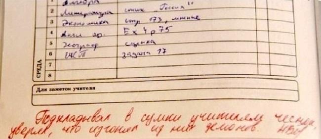 30-neozhydannyh-zapisey-v-shkolnyh-dnevnikah-8