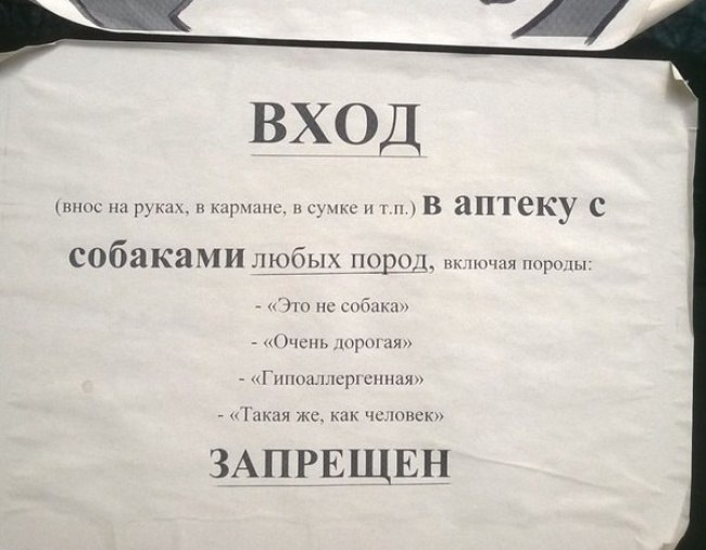 podborka-shedevralnyh-obyavleniy-2