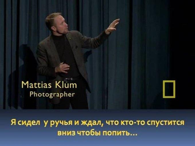 zahvatyvayshaya-istiriya-odnogo-snimka-dikoy-prirody-1