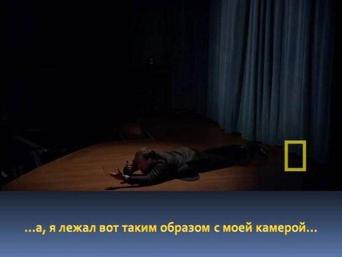 zahvatyvayshaya-istiriya-odnogo-snimka-dikoy-prirody-10