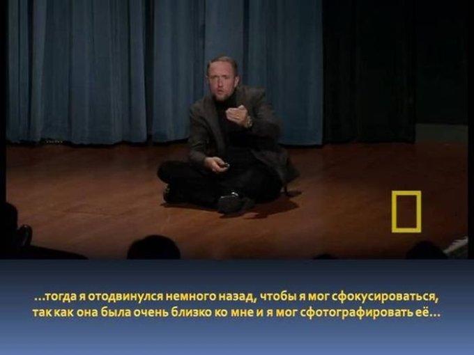 zahvatyvayshaya-istiriya-odnogo-snimka-dikoy-prirody-12