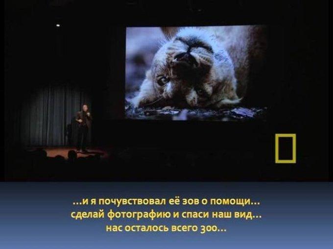 zahvatyvayshaya-istiriya-odnogo-snimka-dikoy-prirody-14