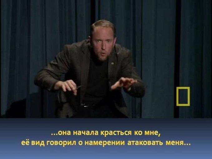 zahvatyvayshaya-istiriya-odnogo-snimka-dikoy-prirody-9