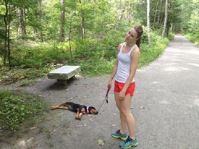 Прогулки со щенком – это очень весело. Так говорят.