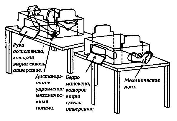 kak-ustroeny-7-izvestnyh-focusov-3