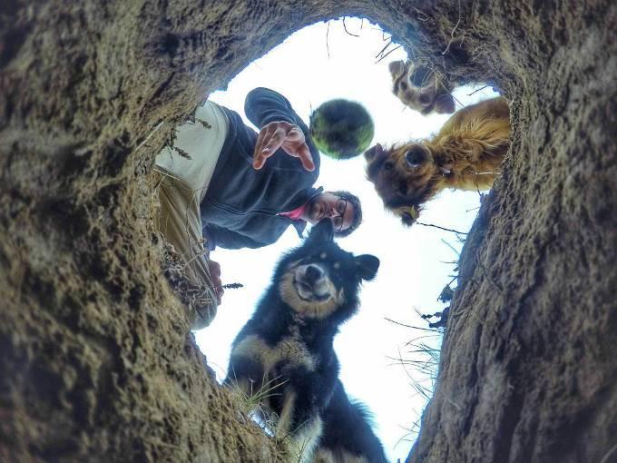 tim-dogs-2