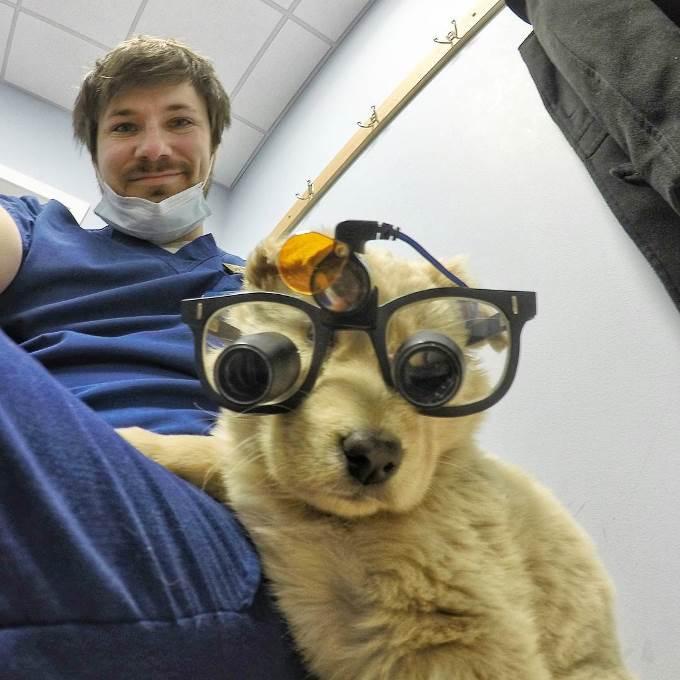 tim-dogs-3