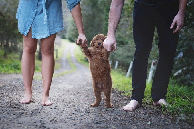 «Съемки прошли очень весело! И щенок, кажется, наслаждался вниманием и заботой, которые мы ему оказывали».