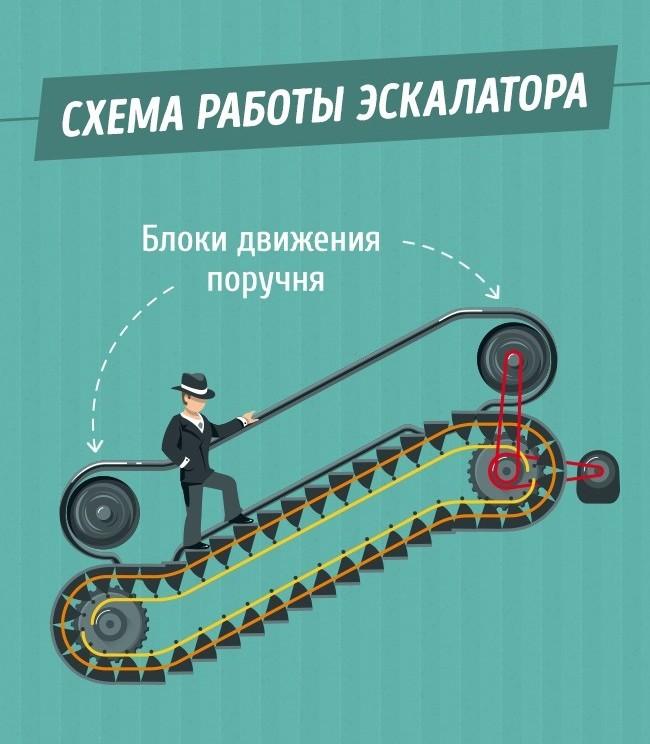 tak-vot-pochemu-poruchni-v-metro-edut-bystree-eskalatora-2